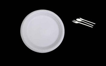 Environment friendly biodegradable disposable tableware plates in india